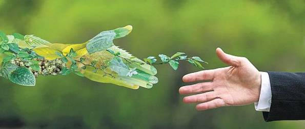 bl06_greenenergyfinance